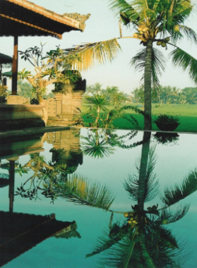 byron-yoga-greenfeilds-pool-bali