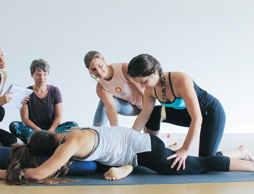 Which Level 1 Yoga Teaching Training is right for you?