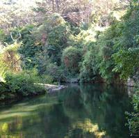 govinda-creek.jpg