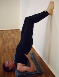 asana spotlight  salamba sarvangasana  byron yoga